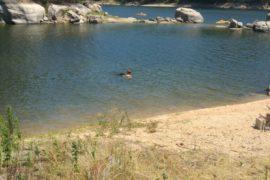Excursie Rio Mondego