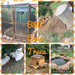 dagelijkse leven bij Casa Traca