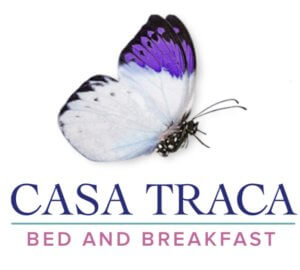 Casa Traca logo