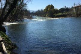 Kanoën en zwemmen