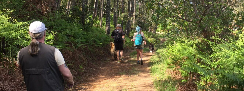 Rondreizen Portugal Wandeling Leen Hiking