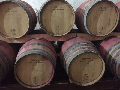 Santar wijnen opgeslagen in eiken vaten